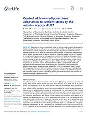 ALK7 controls BAT adaptation to nutrient stress
