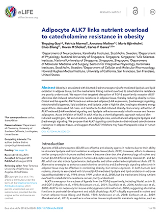 Adipocyte ALK7 links diet to catecholamine resistance in obesity